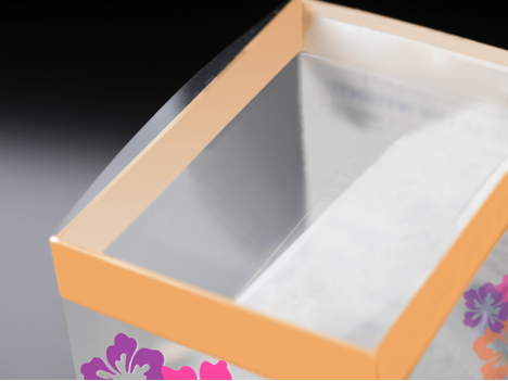 Clear Folding Carton Packaging